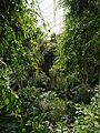 Barbican Conservatory on 7 Aug 2014 03.jpg