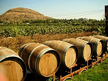 Six outdoor barrels against a background of vineyards and a hill