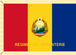 Battle flag of Romania (1966-1989, reverse).svg