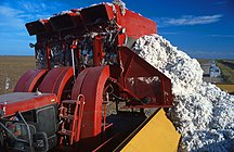 Texas-Agricoltura-Baumwoll-Erntemaschine