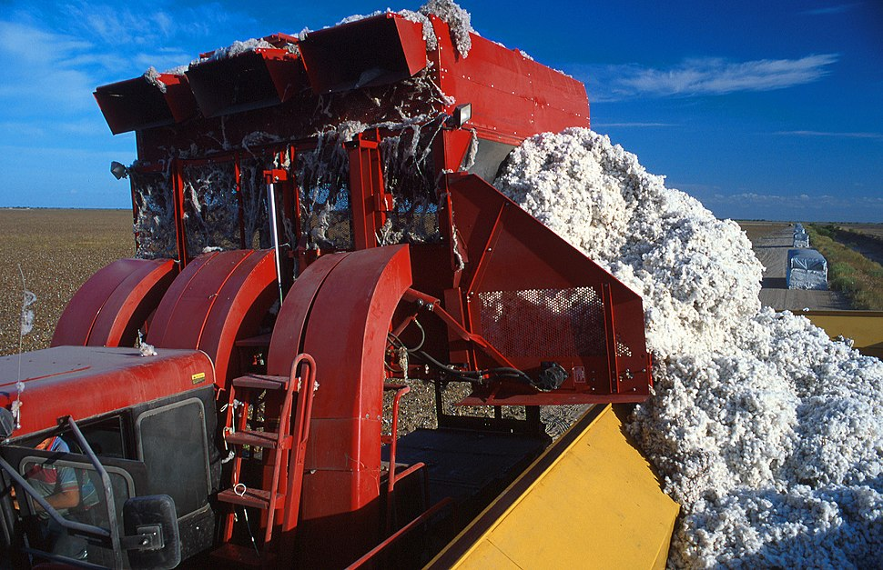 Baumwoll-Erntemaschine.jpeg