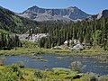 Beaver lodge McGee Creek.jpg