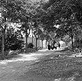 Begrafenisstoet op weg naar het kerkhof, Bestanddeelnr 254-0875.jpg