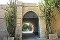Beit Gemal Cactus gate - panoramio.jpg