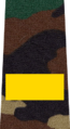 Belarus MIA—14 Senior Sergeant rank insignia (Camouflage).png