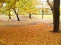 Berlin - G-v-Siemens-Park - geo.hlipp.de - 30169.jpg