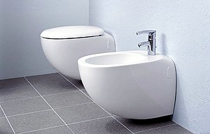 A toilet (left) and a bidet (right).