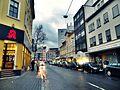 Bieberer Straße Richtung Waldstraße.JPG