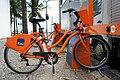 Bike Rio 01 2013 5732.JPG