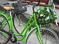 Bike and flowers 1.jpg