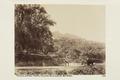 Bild från familjen von Hallwyls resa genom Algeriet och Tunisien, 1889-1890 - Hallwylska museet - 92047.tif