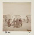 Bild från familjen von Hallwyls resa genom Egypten och Sudan, 5 november 1900 – 29 mars 1901 - Hallwylska museet - 91659.tif