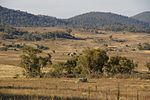 Bimberi Wilderness.jpg