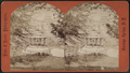 Bird's-eye View in Congress Park, from Robert N. Dennis collection of stereoscopic views 3.png