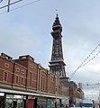 Blackpool Tower - geograph.org.uk - 2639480.jpg