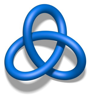 Homeomorphism - A trefoil knot is homeomorphic to a circle, but not isotopic. Continuous mappings are not always realizable as deformations.  Here the knot has been thickened to make the image understandable.
