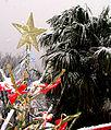 Božić na Jadranu 003.jpg