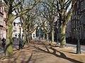 Bomen op de Hooglandsche Kerkgracht, Leiden.JPG