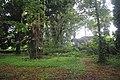 Botanic garden limbe141.jpg
