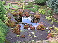 Botanická zahrada Liberec (21).jpg