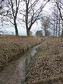 Breitenworbis Rhin.JPG