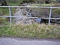 Bridge over the Allt Uchd Rodha - geograph.org.uk - 170805.jpg