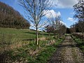 Bridleway and Orchard Wood - geograph.org.uk - 352437.jpg