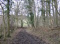 Bridleway north of Cross Lanes - geograph.org.uk - 348530.jpg