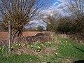 Bridleway to Preston Wynne - geograph.org.uk - 146310.jpg