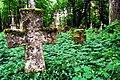 Brusno Stare - cmentarz greko-katolicki na terenie dawnej wsi.jpg