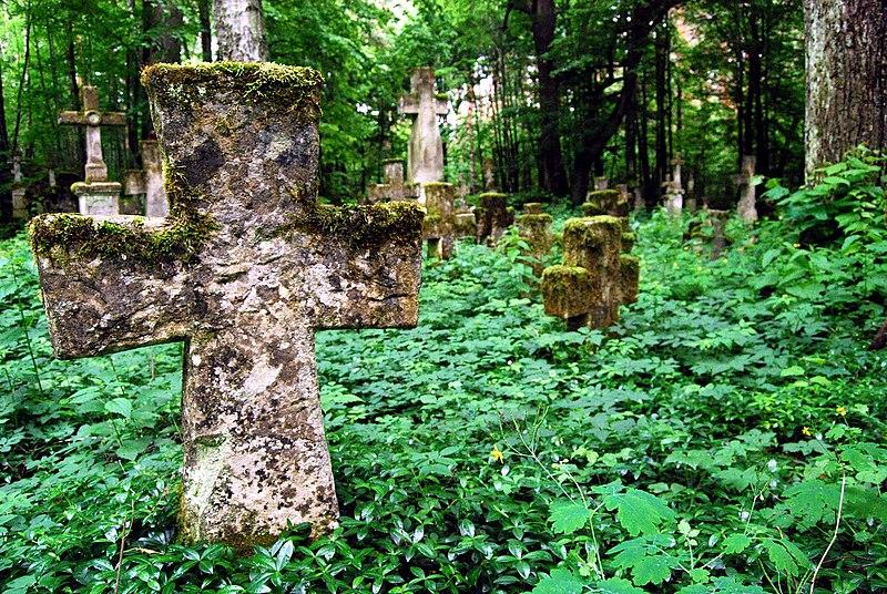 Wyróżnienie: Pozostałości cmentarza greckokatolickiego na terenie nieistniejącej już wsi Brusno Stare w gminie Horyniec-Zdrój (województwo podkarpackie).