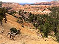 Bryce Canyon from scenic viewpoints (14493657317).jpg