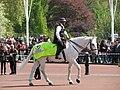 Buckingham Palace (3695704784).jpg