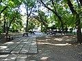 Bucuresti, Romania, Parcul Herastrau (Imagine din parc); B-II-a-A-18802 (5).JPG