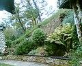 """Bujna roślinność przy zajeździe """"Bałtek"""" - panoramio.jpg"""