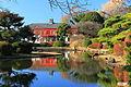 Bunkyou Koishikawa Botanical Japanese Garden 1 (1).JPG