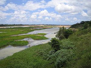 Burdekin River - Burdekin River, 2005, taken from the Burdekin Bridge