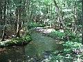 Burnham Cemetary Rd. Garland Maine - panoramio.jpg