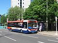 Bus img 9079 (16171573806).jpg