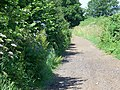 Byway near Alderton - geograph.org.uk - 1381915.jpg