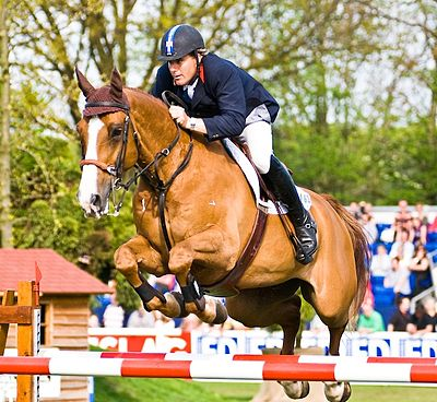 Dfs Darley Dale >> British Jumping Derby - WikiVisually