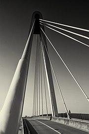 Cable-stayed bridge (tuibrug) 05.jpg