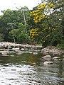 Cachoeira de Peruíbe.jpg