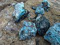 Caledonite, Linerite - panoramio.jpg