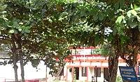 Calicut University Employees Union Office.jpg