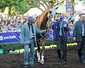 California Chrome before 2016 BCC.jpg