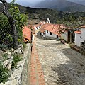 Calle principal de Los Nevados.jpg