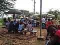 Campus University of Yaoundé I (2014) 'chamignons' 2.jpg