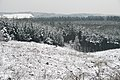 Cannock Chase In The Snow Pain In The Hardtail (27436555).jpeg