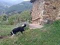Casa de las Doñas 126.jpg